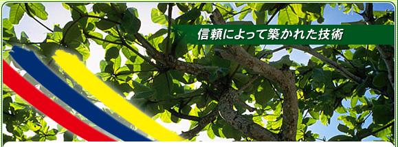 埼玉県 川口市 外壁塗装工事 防水塗装工事 塗装工事全般 加藤塗装